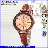 공장 고전적인 우연한 석영 숙녀 손목 시계 (Wy-043F)