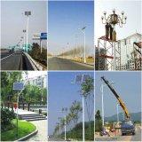 La Chine 305W avec des panneaux solaires et de haute qualité à bas prix