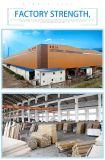 Puerta de entrada de acero de la seguridad digna de confianza de la venta de Drict de la fábrica (sx-30-0007)