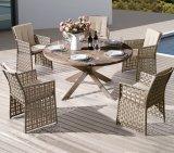 A mobília do pátio piscina Home Hotel Restaurante Office Destileen Cadeira de vime e mesa de jantar (J3066R)