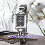 Design personalizado Ver ligas de aço inoxidável Luxo Assista (WY-040D)