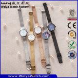 Relógio de senhoras impermeável de quartzo da cinta de couro do ODM (Wy-062A)