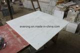 床または壁のクラッディングのための灰色の静脈が付いているGuangxiの白い大理石のタイル