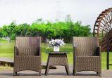 Meubles extérieurs de rotin de PE de loisirs de cour de terrasse de jardin