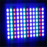 luz de inundação do diodo emissor de luz de 600W RGB com sistema de DMX Dali