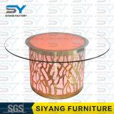 Tableau dinant rond de Tableau d'acier inoxydable de Tableau des meubles DEL