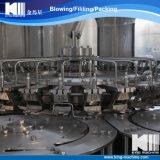 Kleinreines Mineralwasser, füllende Pflanze produzierend