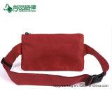 Paquetes de Fanny coloridos de la promoción de Wholesare, bolso modificado para requisitos particulares de la cintura de la insignia