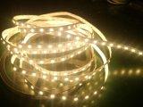 Hohe Helligkeit SMD3528, SMD5050, SMD2835, SMD5730 LED Streifen-Licht