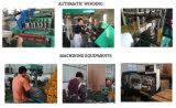Ms de Alumínio do Motor eléctrico trifásico 220/380V