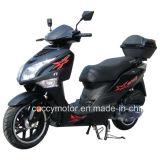 "China Luxury 125cc/150cc 4-Stroke 13 "" Big Wheel Tire Motorbike (Octane)"