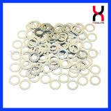 Zinco/magnete di anello sinterizzato Nichel-Rivestimento di NdFeB
