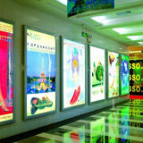 modulo chiaro esterno del PVC SMD5050 di 65lm 0.72W 3X LED per la pubblicità della lettera del contrassegno/casella chiara/metallo