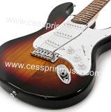 Изготовление поставщика /Guitar гитары Lp электрической гитары/нот Cessprin (ST602)