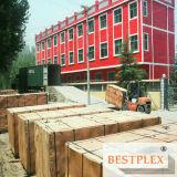 Contre-plaqué de construction, contre-plaqué Shuttering, plein peuplier, bois dur, et faisceau de bouleau