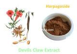 Harpagosidesバランスをとるコレステロール、純粋で自然な悪魔の爪のルートエキスまたは1%-5%の粉