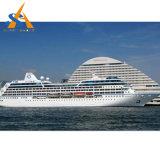 Buena nave de pasajero de diseño de China