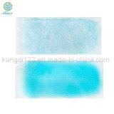 중국 제조자 ISO9001를 가진 냉각 젤 패치 냉각 발열 패치: 2008년