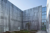 Piatto perforato di alluminio della maglia del metallo del comitato per la parete divisoria