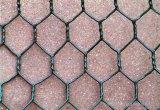 Fabrik-Lieferant galvanisierte geschweißten Gabion Kasten