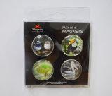 Подарки магнита стеклянной бусины Animial сувенира
