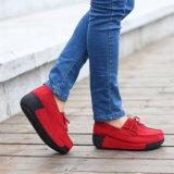 女性のスポーツの新式蹄鉄を打つ運動靴(FTS1020-9)に