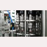 De automatische Installatie van de Verwerking van het Vruchtesap (RCGF40-40-12)