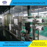 Het Systeem 1000L/H van de Reiniging van het Drinkwater van de Omgekeerde Osmose van de Installatie van de Behandeling van het water