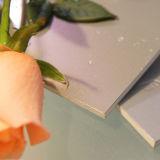 Самый высокий уровень Огнеупорное Алюминиевый композитный пластиковые панели