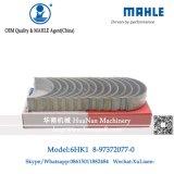 Zx330 Zx360 Zx330-3를 위한 Mahle 상표 6HK1 주요 방위