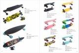 Skateboard het van uitstekende kwaliteit Mini/2406/2808/3108 van Sporten
