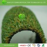 高品質の住宅の余暇の合成物質の草