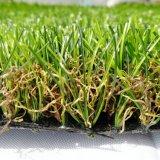 De tuin siert het Valse Gras van het Gras voor het Modelleren