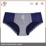 Grosser Größen-Spitze-Büstenhalter und Panty Unterwäsche-Set