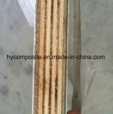 Anti-UVglattes glattes FRP Furnierholz-Panel