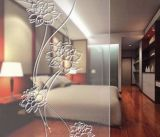3mm, 4mm, 5mm, 6mm, 8mm, 10mm, vetro Acid-Etched glassante di 12mm