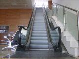 Ahorro de energía y bajo ruido de la ejecución de Escaleras mecánicas