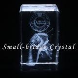 3D cristal grabado con láser Acuario.