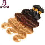 최고 자연적인 브라질 바디 파 Ombre 3 음색 Virgin 머리