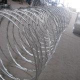 コンチェルティーナまたはかみそりの有刺鉄線の網