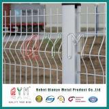 Frontière de sécurité de treillis métallique de Qym 3D/frontière de sécurité soudée Curvy de treillis métallique avec 3 fois
