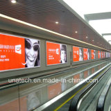 LED 알루미늄 프레임 천장 거는 광고 매체 PVC 기치 가벼운 상자 Signage