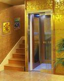 Mirror St. St. Decoration를 가진 가정 Elevator