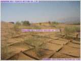 Netz für Sand Control