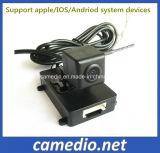 Caméra de caméra de sauvegarde de véhicule arrière de véhicule de voiture de la voiture avec ligne de guidage