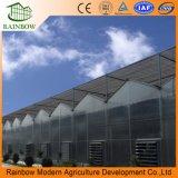 Agricultrual를 위한 폴리탄산염 갱도 온실을 완료하십시오