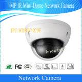 De Camera van kabeltelevisie van het Netwerk van de mini-Koepel van IRL van Dahua 1MP (ipc-HDBW1020E)
