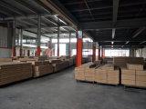 Professionele Fabrikant 6 van China de Kast van het Staal van de Deur van het Compartiment
