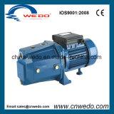 Selbstansaugende Strahlen-Wasser-Hochdruckpumpe (JET-100P)