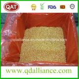 Grains de maïs d'IQF avec la qualité